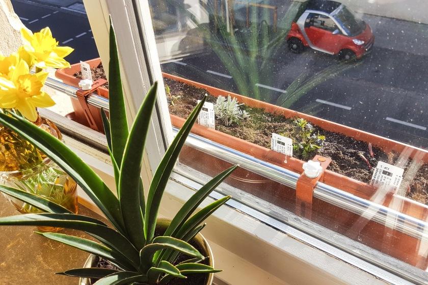 Blumenkasten Halterung Fensterbank ohne bohren
